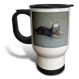 3dRose tm_23805_1 Yorkie Travel Mug, 14-Ounce, Stainless Ste