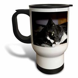 3dRose tuxedo cat black and white lying down one eye open, T